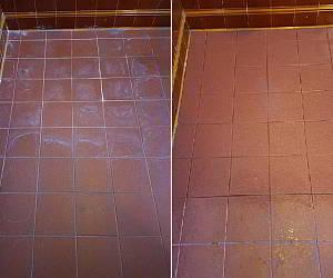 Guard Remover® Eco - Efflorescence & Cement 1